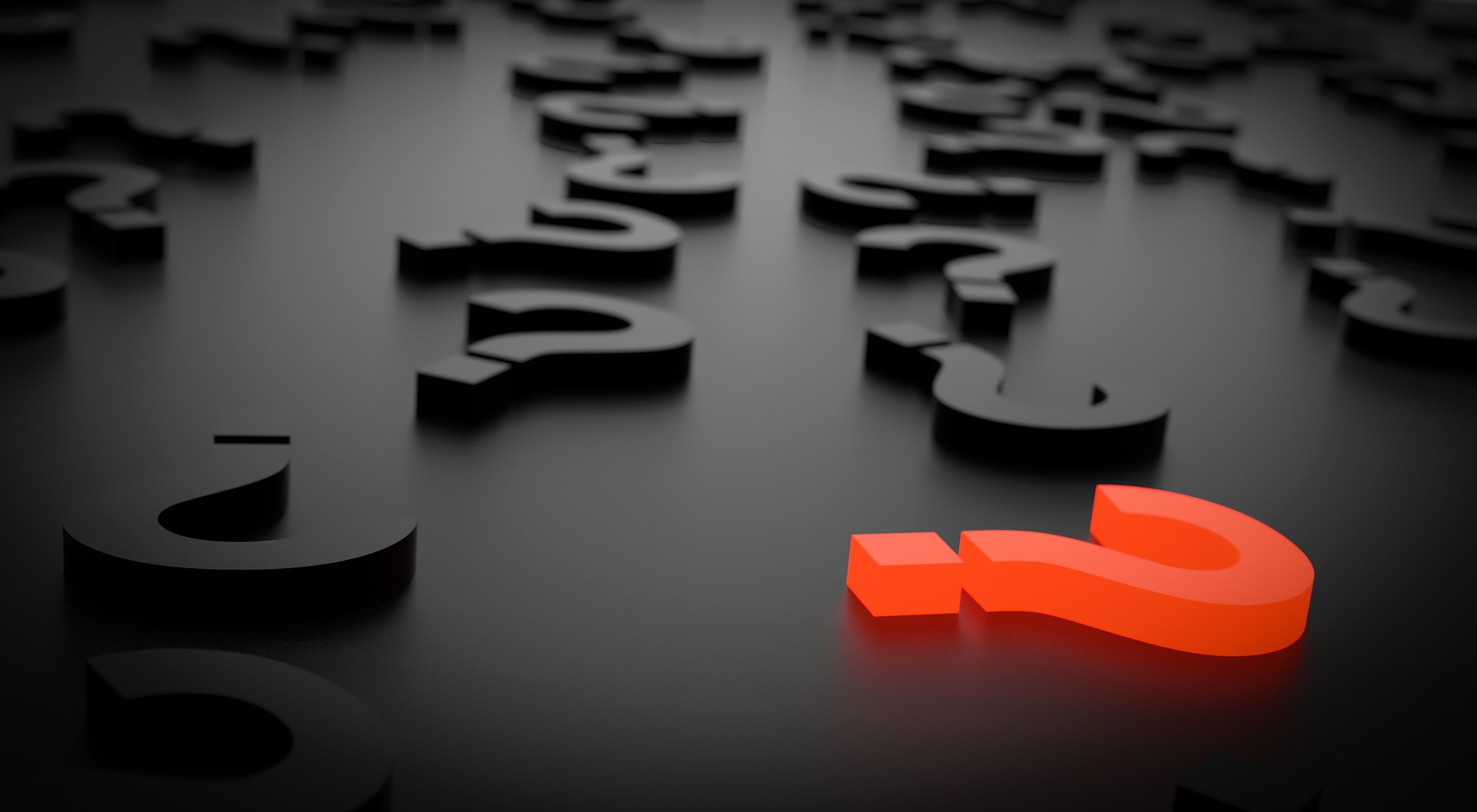 The #1 Question Your Feasibility Study Must Answer