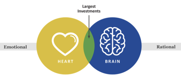 Graphic illustrating that large investments are both an emotional and rational act